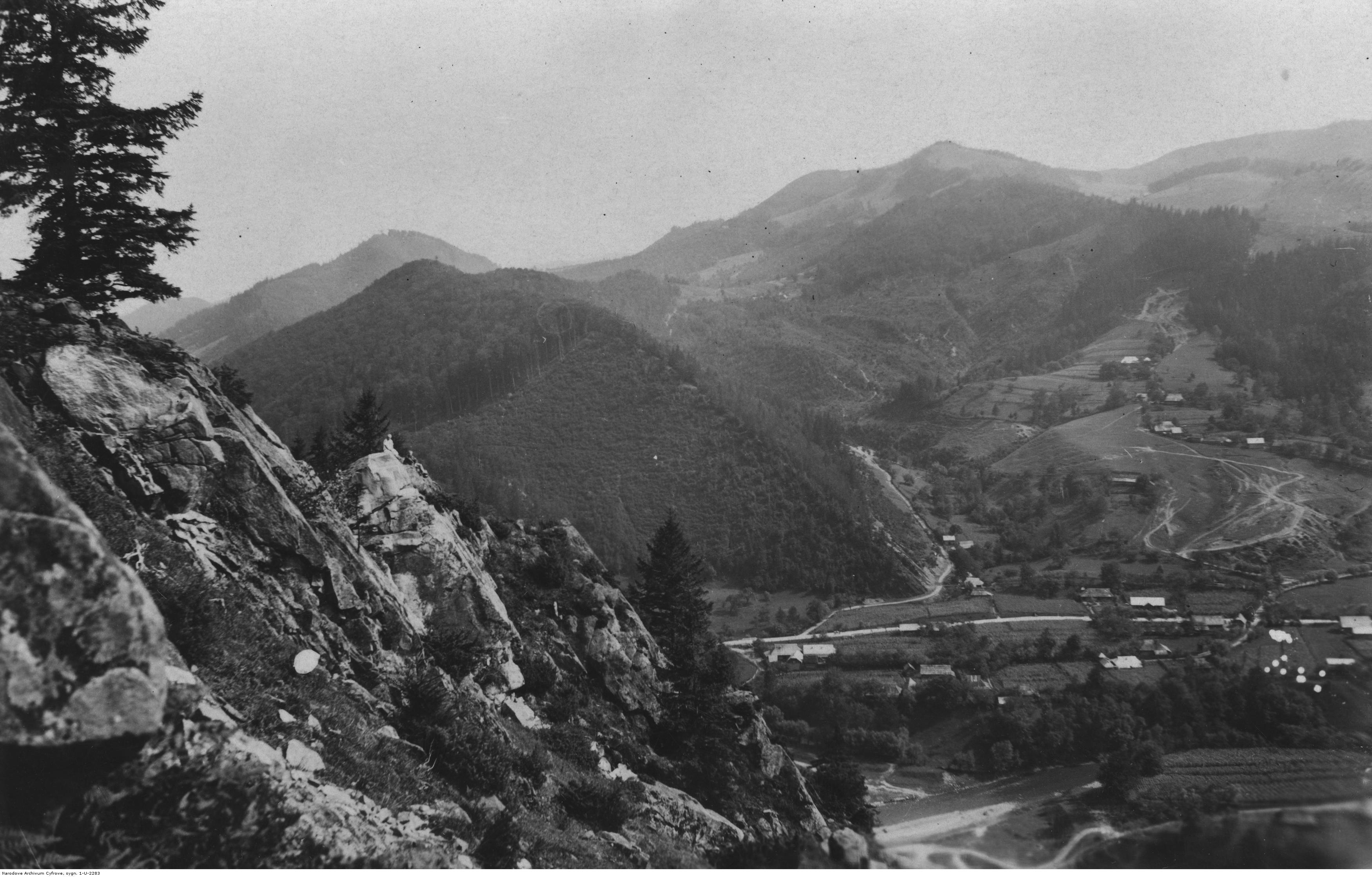 Панорама Косівських гір